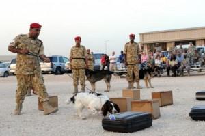 qatar army