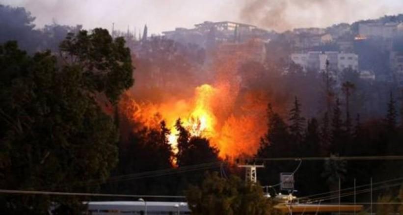 حرائق مستمرة في فلسطين المحتلة لليوم الخامس على التوالي